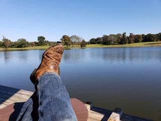 7333 Cr 4712, LARUE, TX 75770 (MLS #89171) :: Steve Grant Real Estate