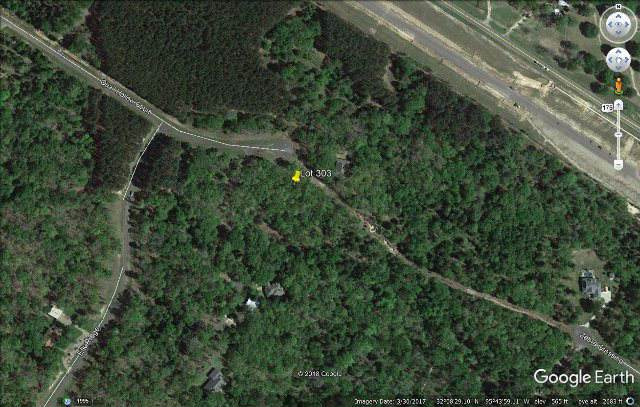 Lot 303 Quail Hollow Court, LARUE, TX 75770 (MLS #89435) :: Steve Grant Real Estate