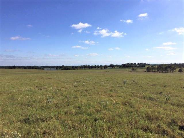 0 Fm 1651, CANTON, TX 75103 (MLS #89683) :: Steve Grant Real Estate