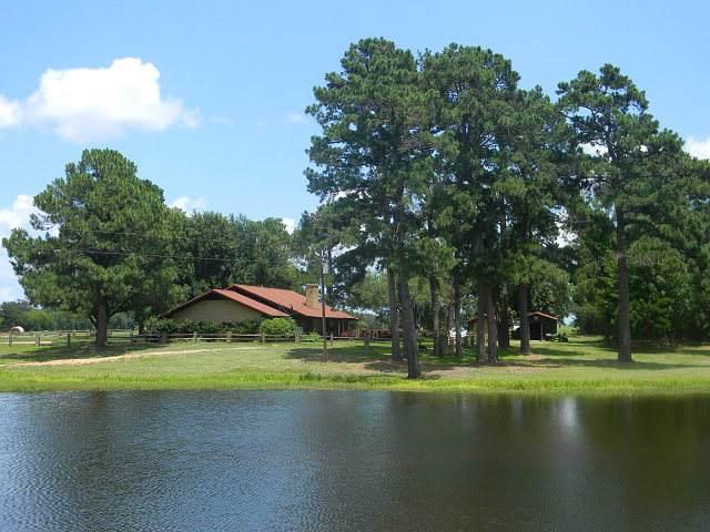7470 Fm 317, ATHENS, TX 75752 (MLS #89936) :: Steve Grant Real Estate