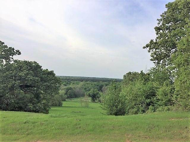 LT 228 Wildlife Way, ATHENS, TX 75752 (MLS #91006) :: Steve Grant Real Estate