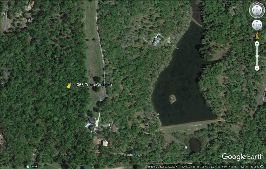 Lot 295 Lago Vista - Photo 1
