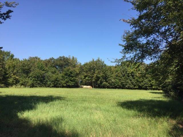 0 Fm 2588, LARUE, TX 75770 (MLS #92227) :: Steve Grant Real Estate