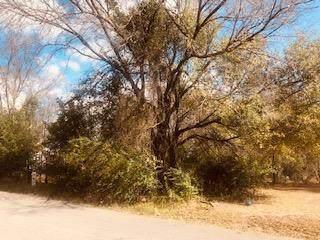 208 Windjammer, GUN BARREL CITY, TX 75156 (MLS #93917) :: Steve Grant Real Estate