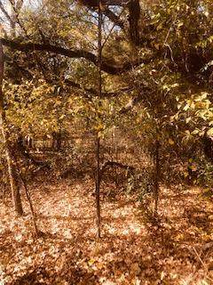 166 Harmon Rd., GUN BARREL CITY, TX 75156 (MLS #93918) :: Steve Grant Real Estate