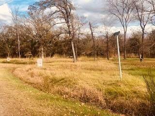 1 Shady Cir, STAR HARBOR, TX 75148 (MLS #93920) :: Steve Grant Real Estate