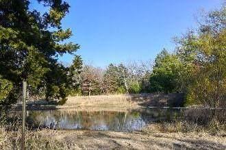 10528 Pr 5205, ATHENS, TX 75751 (MLS #93986) :: Steve Grant Real Estate