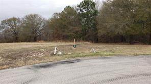 Lot 28R Pine Ridge - Photo 1