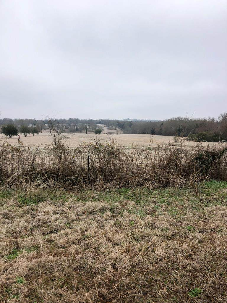 Off of Cr 1119 - Photo 1