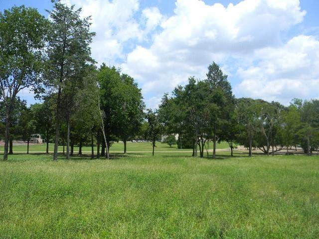1003 S Palestine Street, ATHENS, TX 75751 (MLS #94450) :: Steve Grant Real Estate