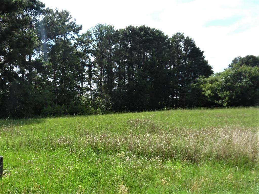 14545 Caddo Creek Circle - Photo 1