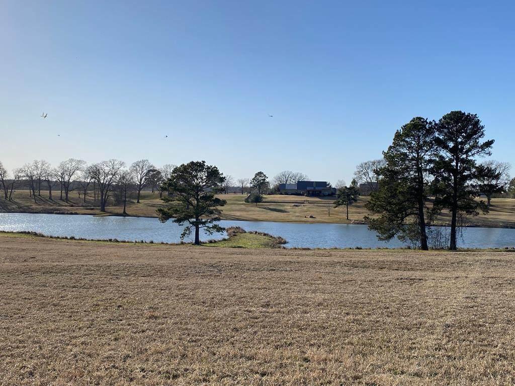 14701 Caddo Creek Circle - Photo 1