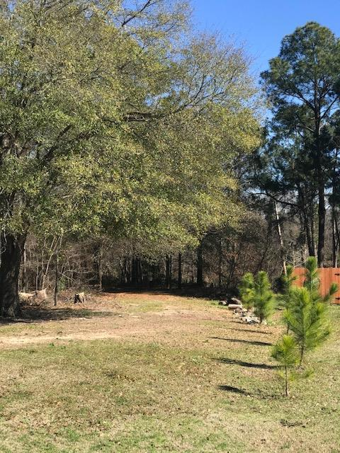 Lot 28 Pine Ridge, ATHENS, TX 75751 (MLS #87356) :: Steve Grant Real Estate