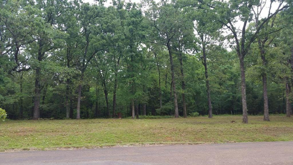 131 Cedar Oaks Drive - Photo 1