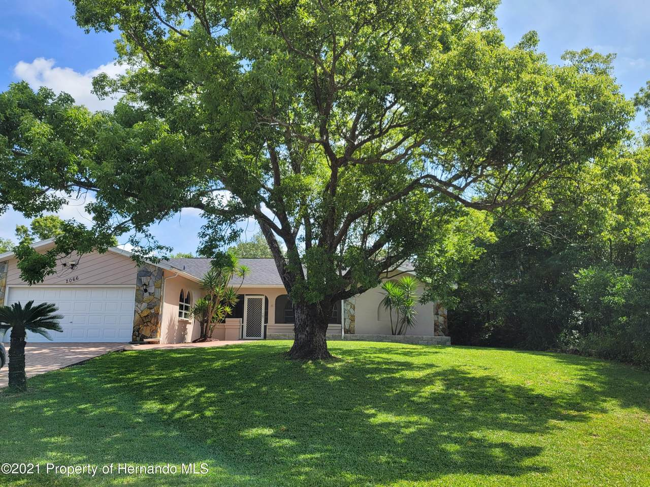 2066 Gold Road - Photo 1