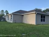 13066 Painted Bunting Avenue - Photo 49
