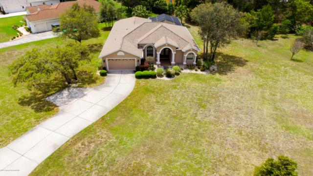11425 Warm Wind Way, Weeki Wachee, FL 34613 (MLS #2183176) :: The Hardy Team - RE/MAX Marketing Specialists