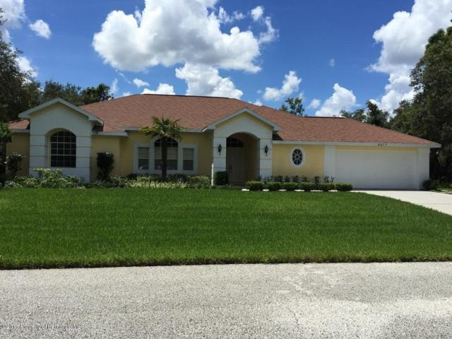 9477 Wilderness Trail, Weeki Wachee, FL 34613 (MLS #2183341) :: The Hardy Team - RE/MAX Marketing Specialists