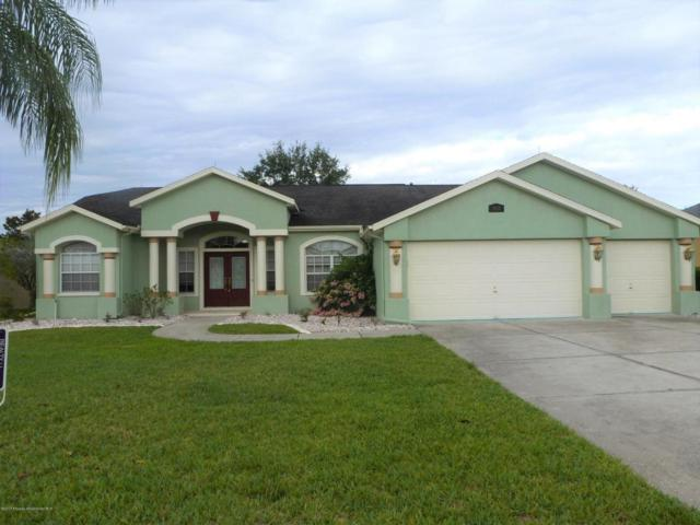 14113 Andrew Scott Road, Spring Hill, FL 34609 (MLS #2184121) :: The Hardy Team - RE/MAX Marketing Specialists
