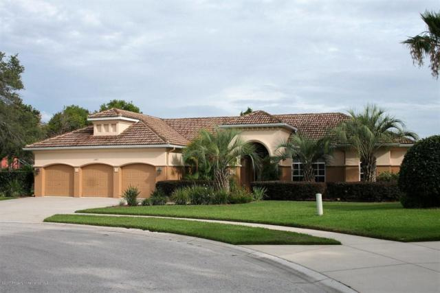 13492 Princewood Court, Spring Hill, FL 34609 (MLS #2184388) :: The Hardy Team - RE/MAX Marketing Specialists