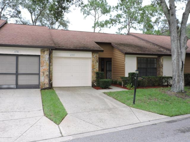 6583 Andromeda Way, Spring Hill, FL 34606 (MLS #2184582) :: The Hardy Team - RE/MAX Marketing Specialists