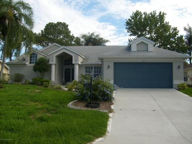 2356 Scenic Hill Drive, Spring Hill, FL 34606 (MLS #2184593) :: The Hardy Team - RE/MAX Marketing Specialists