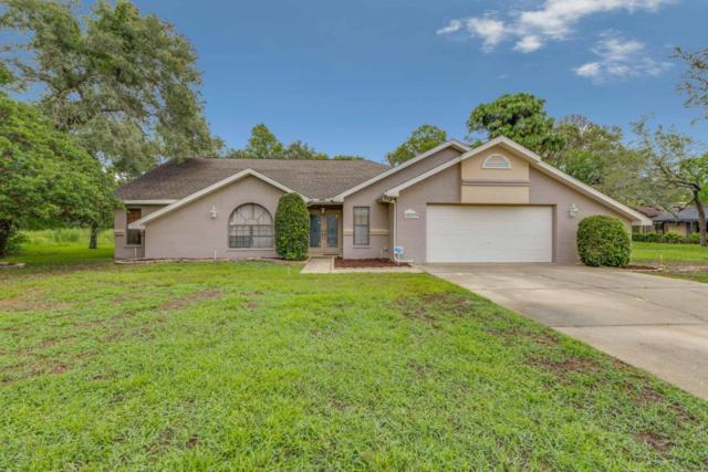 10059 Dunkirk Road, Spring Hill, FL 34608 (MLS #2184757) :: The Hardy Team - RE/MAX Marketing Specialists