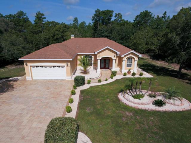 16135 Mellon Road, Weeki Wachee, FL 34614 (MLS #2184769) :: The Hardy Team - RE/MAX Marketing Specialists