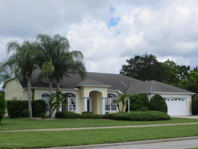 3429 St Ives Boulevard, Spring Hill, FL 34609 (MLS #2184957) :: The Hardy Team - RE/MAX Marketing Specialists
