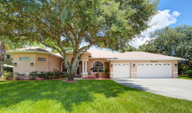 10233 Feather Ridge Road, Weeki Wachee, FL 34613 (MLS #2185028) :: The Hardy Team - RE/MAX Marketing Specialists