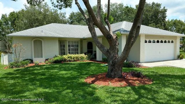 3150 Treeline Court, Spring Hill, FL 34606 (MLS #2185256) :: The Hardy Team - RE/MAX Marketing Specialists