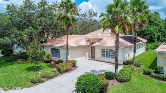 9147 Alexandria Drive, Weeki Wachee, FL 34613 (MLS #2185469) :: The Hardy Team - RE/MAX Marketing Specialists