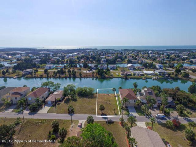3257 Sea Grape Drive, Hernando Beach, FL 34607 (MLS #2185589) :: The Hardy Team - RE/MAX Marketing Specialists