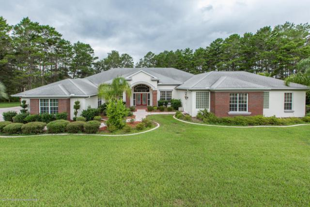 11137 Woodland Waters, Weeki Wachee, FL 34613 (MLS #2185723) :: The Hardy Team - RE/MAX Marketing Specialists