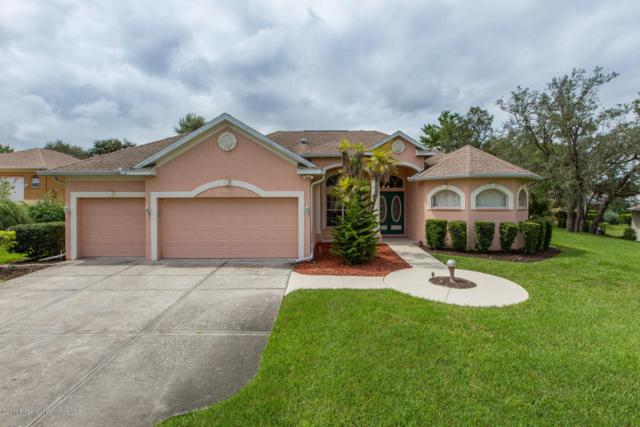 10307 Ridge Top Loop, Weeki Wachee, FL 34613 (MLS #2185727) :: The Hardy Team - RE/MAX Marketing Specialists