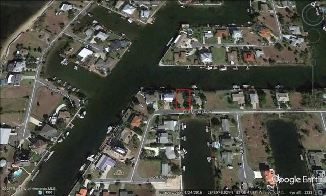 00 Gulf Coast Drive, Hernando Beach, FL 34607 (MLS #2185853) :: The Hardy Team - RE/MAX Marketing Specialists