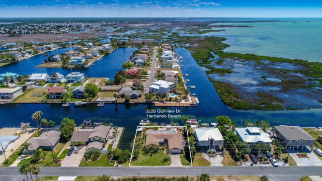 3228 Gulfview Drive, Hernando Beach, FL 34607 (MLS #2186110) :: The Hardy Team - RE/MAX Marketing Specialists