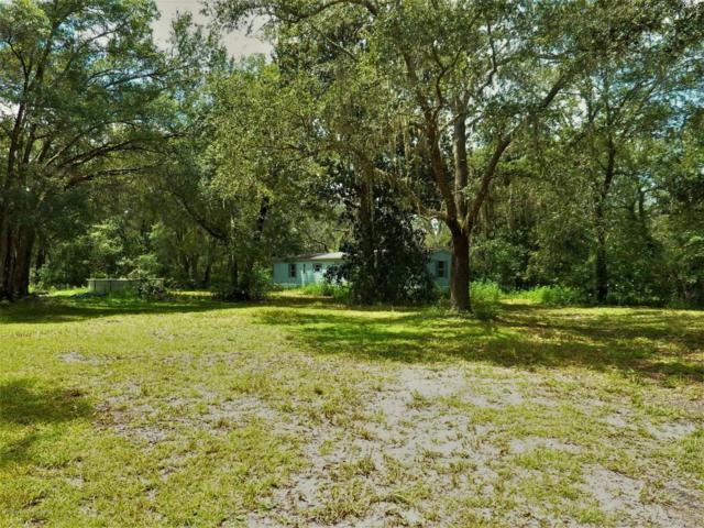 14487 Old Hunter Road, Brooksville, FL 34601 (MLS #2186153) :: The Hardy Team - RE/MAX Marketing Specialists