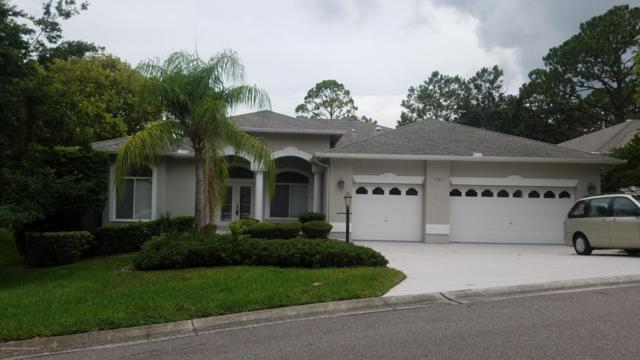 7387 Blue Skies Drive, Spring Hill, FL 34606 (MLS #2186183) :: The Hardy Team - RE/MAX Marketing Specialists