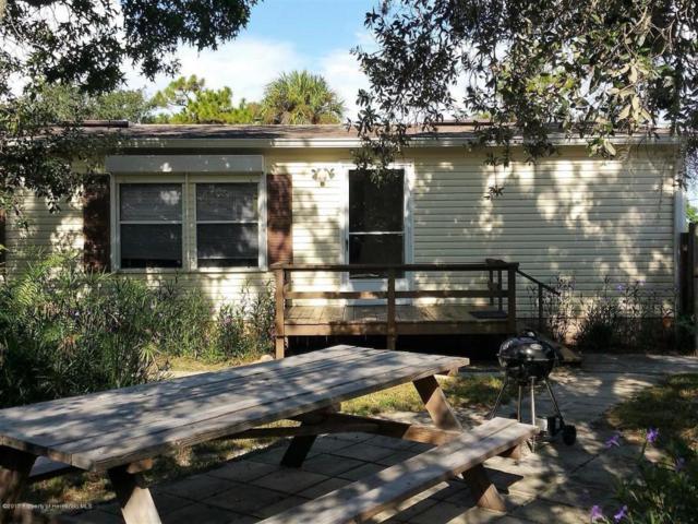9148 Suncoast Terrace, Hudson, FL 34667 (MLS #2186192) :: The Hardy Team - RE/MAX Marketing Specialists