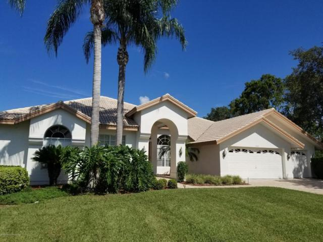 10041 Scarlett Court, Weeki Wachee, FL 34613 (MLS #2186377) :: The Hardy Team - RE/MAX Marketing Specialists