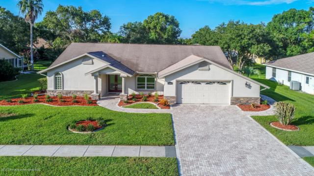 13446 Newcastle Avenue, Spring Hill, FL 34609 (MLS #2186660) :: The Hardy Team - RE/MAX Marketing Specialists