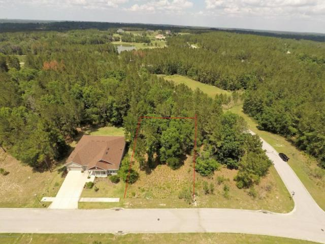 000 Hickory Oak Drive, Brooksville, FL 34601 (MLS #2186663) :: The Hardy Team - RE/MAX Marketing Specialists