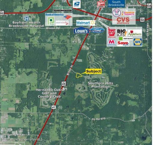 19450 Southern Hills Boulevard, Brooksville, FL 34601 (MLS #2186665) :: The Hardy Team - RE/MAX Marketing Specialists