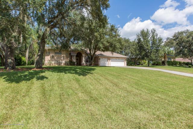10233 Feather Ridge Drive, Weeki Wachee, FL 34613 (MLS #2186902) :: The Hardy Team - RE/MAX Marketing Specialists