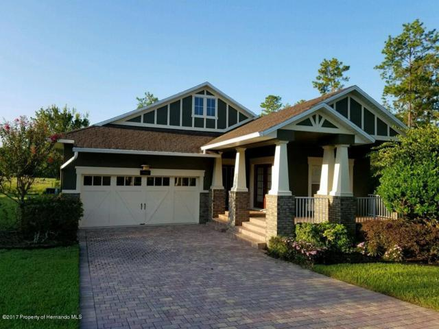 19460 Lily Pond Court, Brooksville, FL 34601 (MLS #2187008) :: The Hardy Team - RE/MAX Marketing Specialists