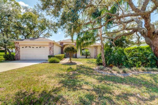 10414 Palmgren, Spring Hill, FL 34608 (MLS #2187022) :: The Hardy Team - RE/MAX Marketing Specialists