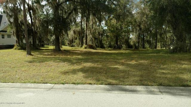 4491 Hickory Oak Drive, Brooksville, FL 34601 (MLS #2187033) :: The Hardy Team - RE/MAX Marketing Specialists