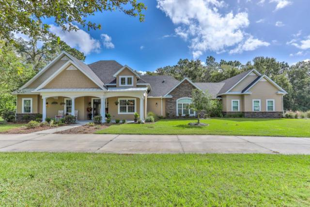 10110 Weeks Drive, Brooksville, FL 34601 (MLS #2187120) :: The Hardy Team - RE/MAX Marketing Specialists