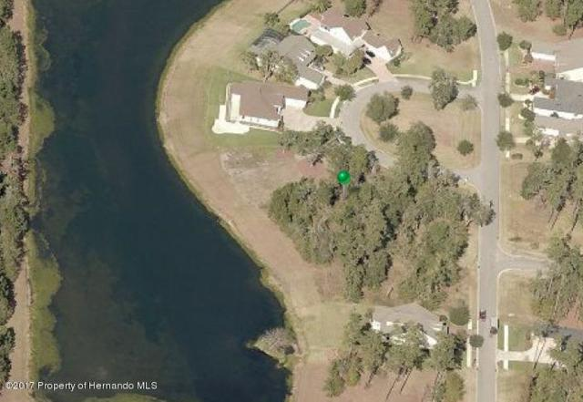 5881 Pointe Place, Brooksville, FL 34601 (MLS #2187172) :: The Hardy Team - RE/MAX Marketing Specialists